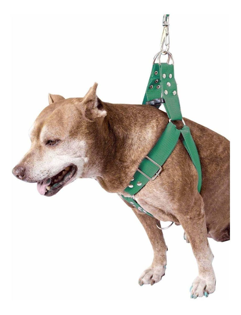 Coleira Peitoral Cachorro Porte Maior Guia Adaptador Cinto Segurança Tamanho M - Cor Verde