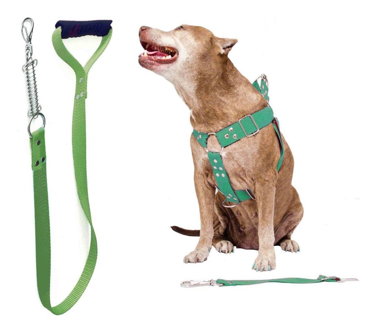 Coleira Peitoral Guia Cinto Segurança Cachorro Doberman Pitbull Anti Puxao - M Verde