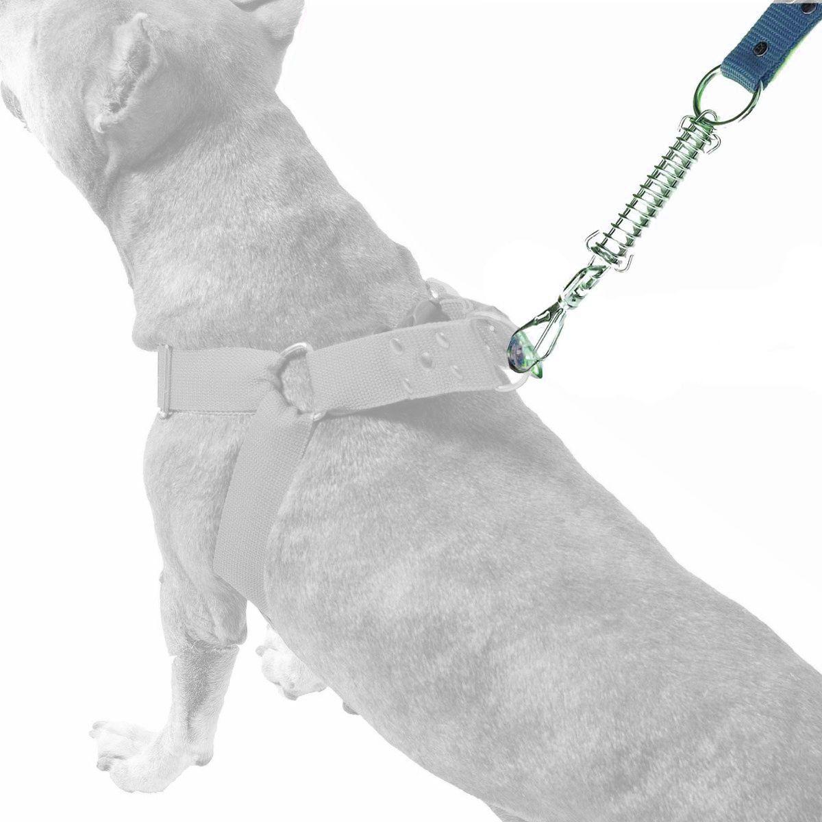 Guia Anti Puxão Com Mola de 1 Metro Resistente Para Cachorros de Maior Porte - Cor Azul