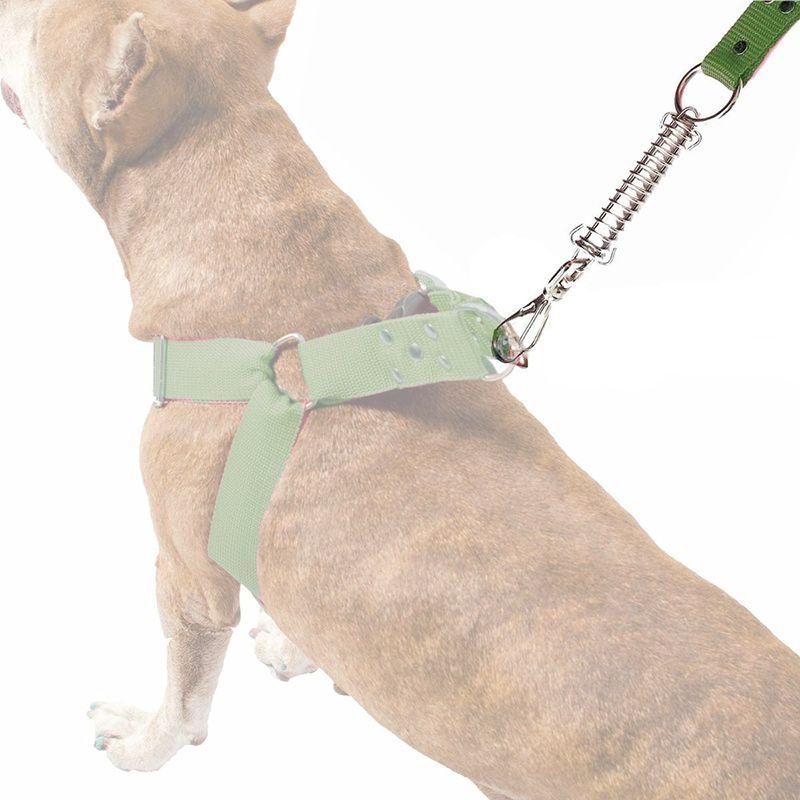 Guia Anti Puxão Com Mola de 1 Metro Resistente Para Cachorros de Maior Porte - Cor Verde