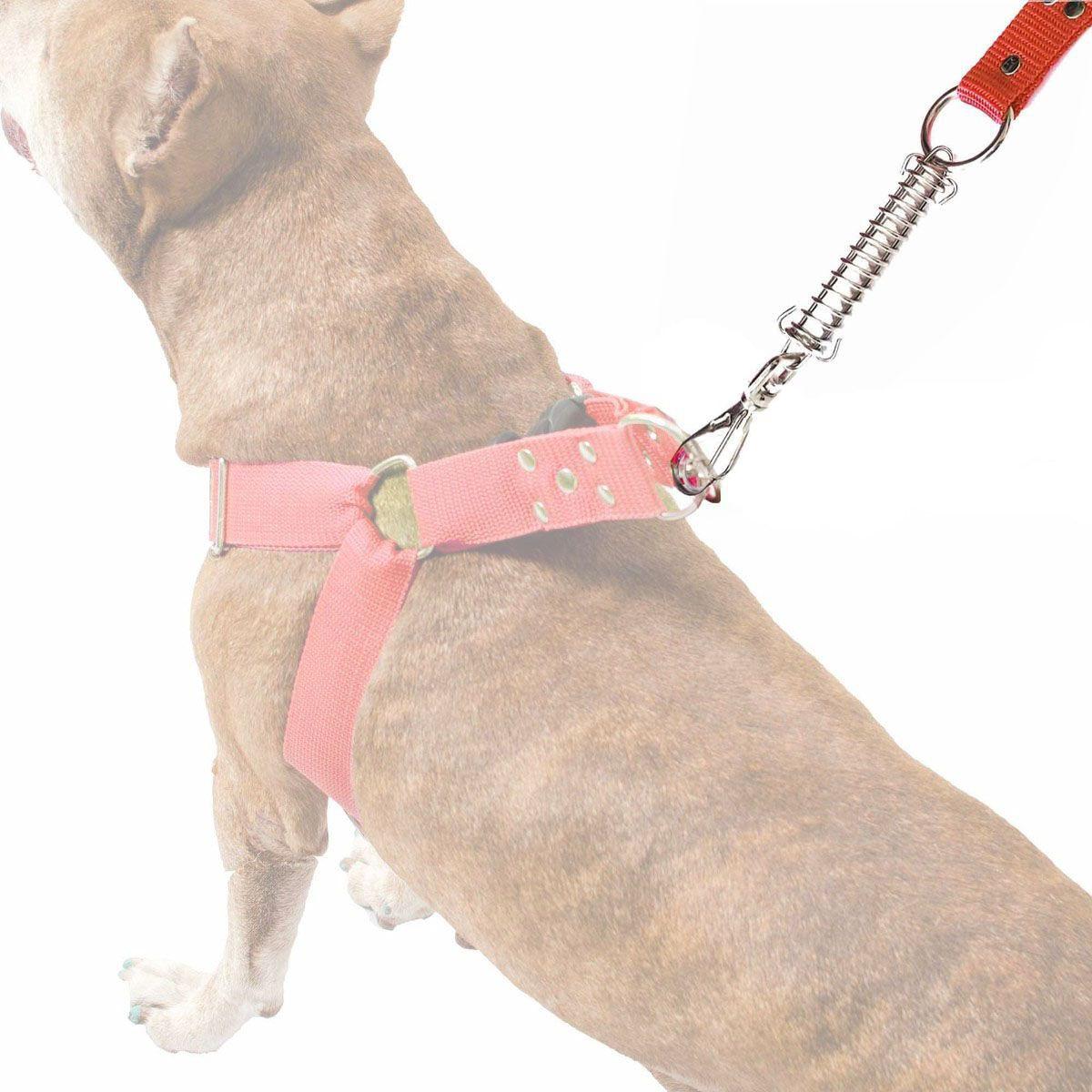 Guia Anti Puxão Com Mola de 1 Metro Resistente Para Cachorros de Maior Porte - Cor Vermelha