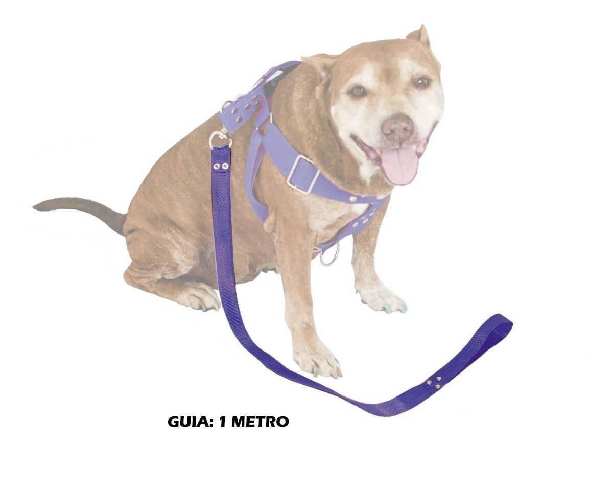 Guia de 1 Metro Resistente Para Cachorros de Maior Porte - Cor Azul