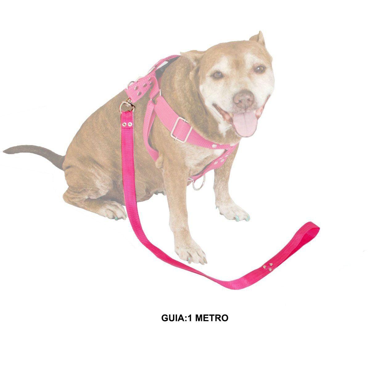 Guia de 1 Metro Resistente Para Cachorros de Maior Porte - Cor Rosa