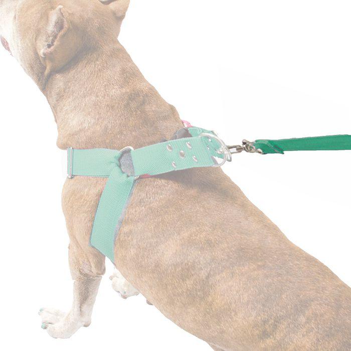 Guia de 1 Metro Resistente Para Cachorros de Maior Porte - Cor Verde