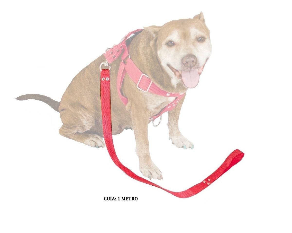 Guia de 1 Metro Resistente Para Cachorros de Maior Porte - Cor Vermelha