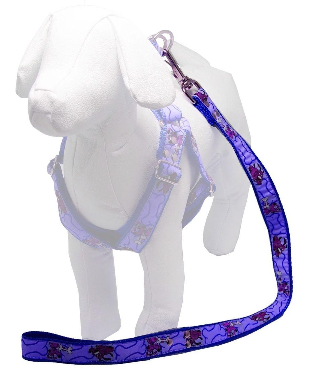 Guia de 1 Metro Resistente Para Cachorros de Menor Porte - Cor Azul