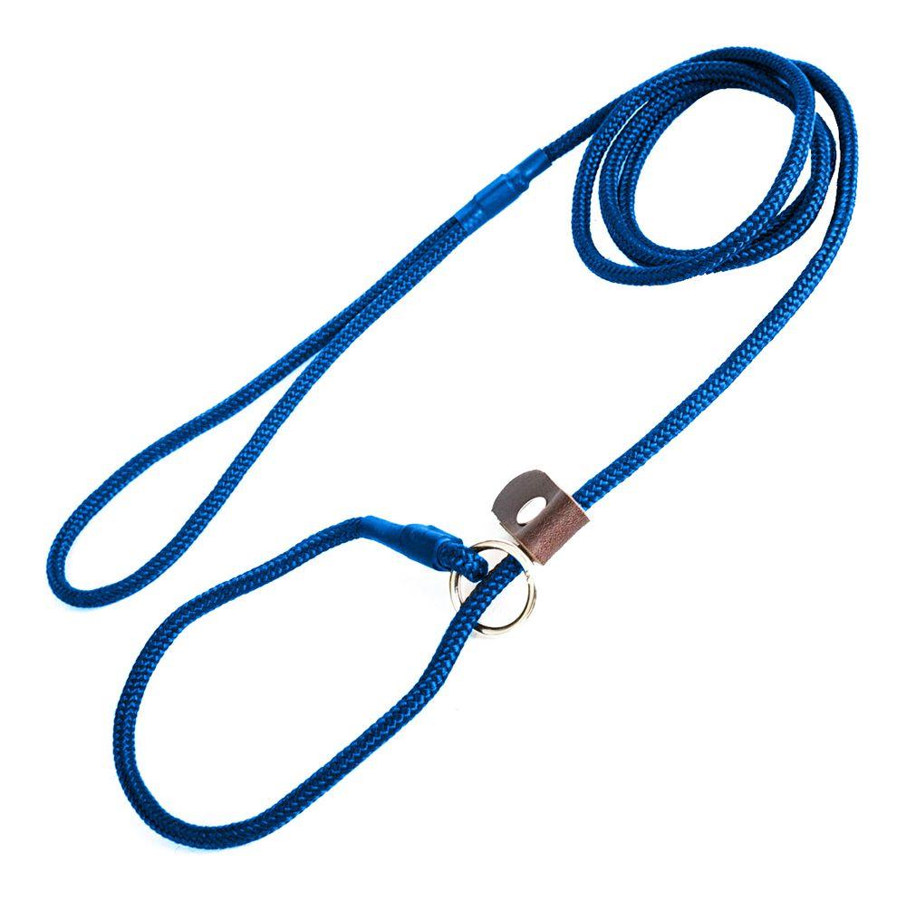 Guia Unificada 6mm Coleira Enforcador Cão Adestramento - Azul