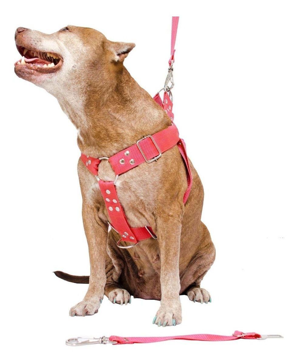 Kit 2x Coleira Peitoral Cachorro Porte Maior Guia Adaptador Cinto Segurança Tamanho M - Cores Preta + Vermelha