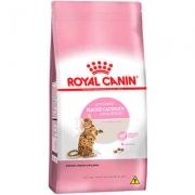 Ração Royal Canin Kitten Sterilised para Gatos Filhotes Castrados