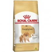 Royal Canin Pomeranian Adulto