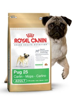 Royal Canin Pug Adulto