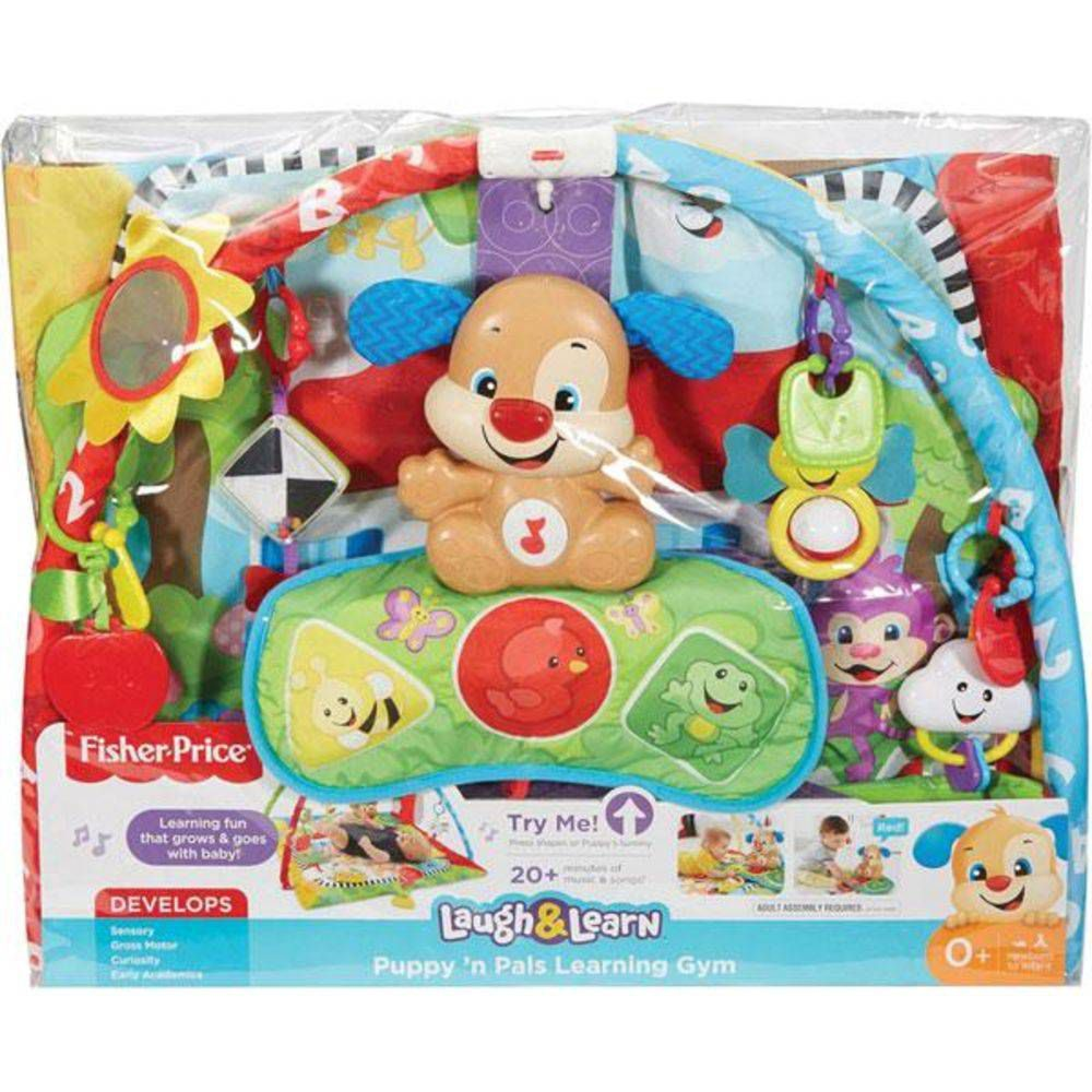 Fisher-Price Ginásio Cachorrinho FFD19 Mattel