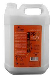Condicionador Pro To Day Revigorante Lisse  5 litros