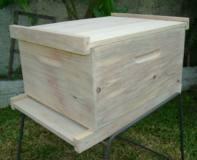 Ninho com tampa e fundo para caixa de abelhas