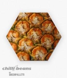 Quadro Hexagonal -  Abacaxi 2