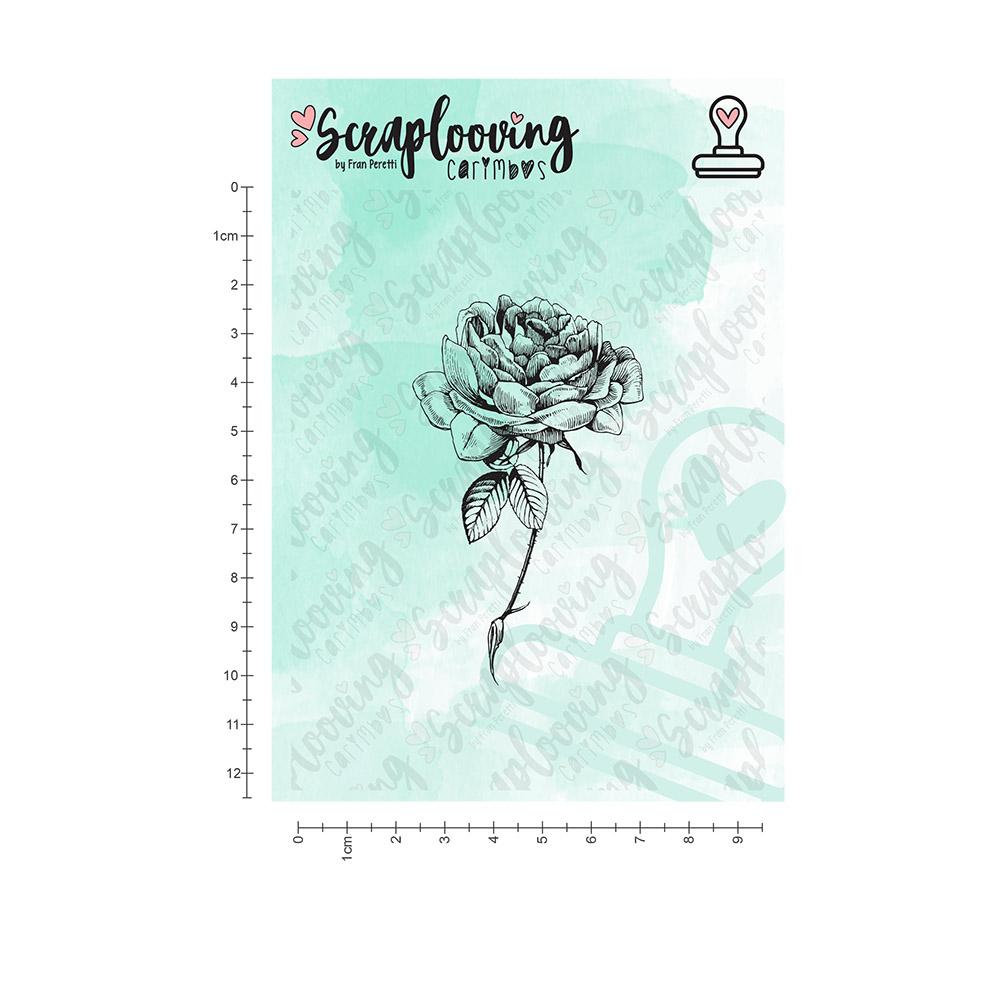 Cartela Floral 04