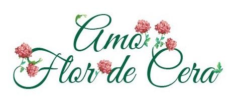 Amo Flor de Cera Ltda ME