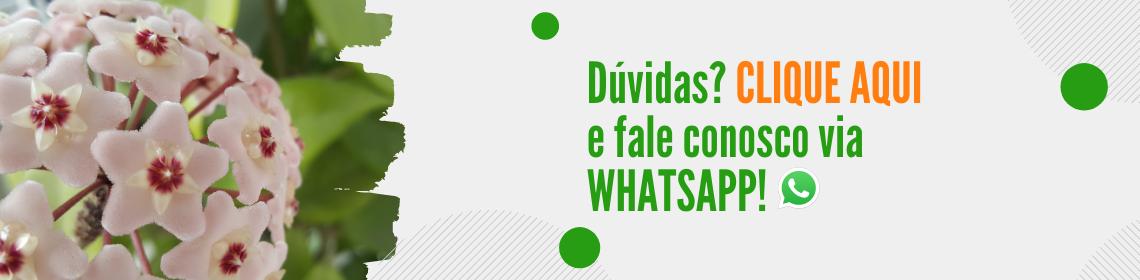 Duvidas ? Entre em contato conosco! Não fazemos vendas pelo whatsapp