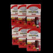 Fertilizante Gota a Gota - Flores - Vithal - 36 ampolas