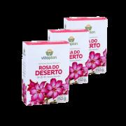 Fertilizante rosa do deserto - kit 3 caixas 150 gr