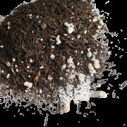 Substrato para flor de cera, hoyas e suculentas - 4 kilos