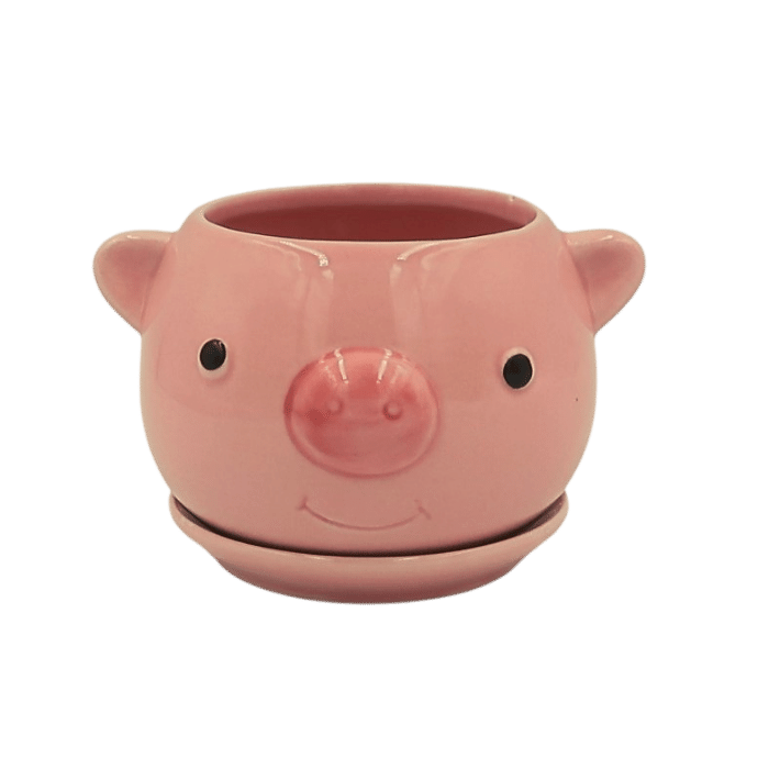 Cachepo de ceramica - 2 porquinhos