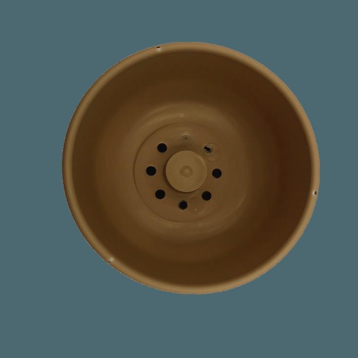 Cuia com prato - areia - 09 x 15 cm kit 2 unid