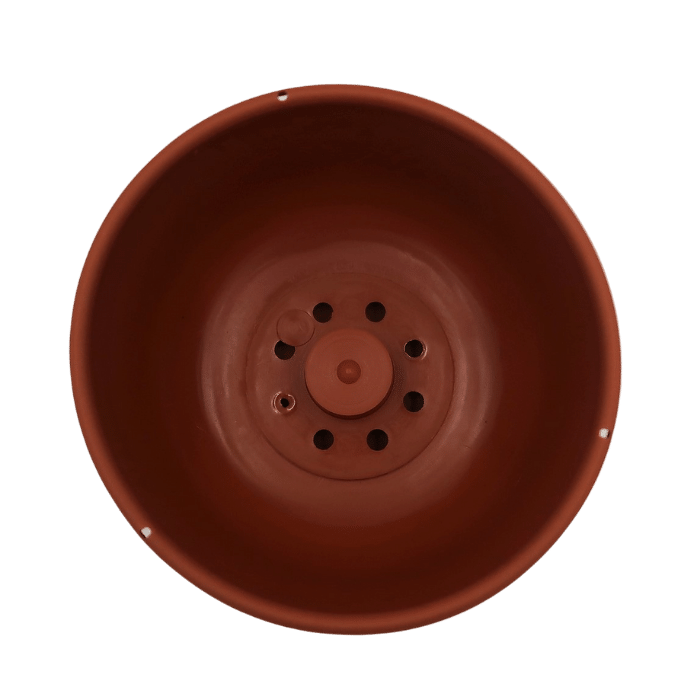 Cuia com prato - marrom - 09 x 15 cm kit 2 unid