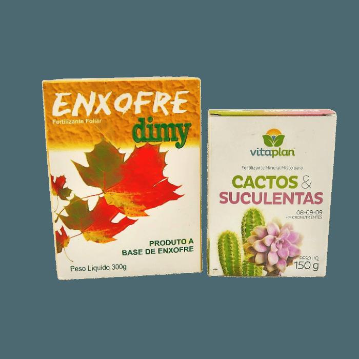 Enxofre + Fertilizante Cactos e Suculentas