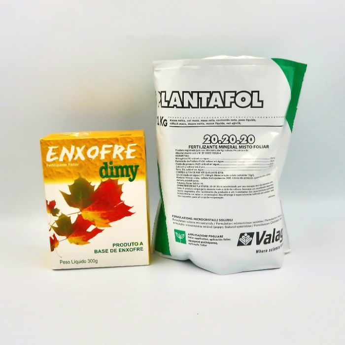 Enxofre + Plantafol -  20.20.20 - manutenção