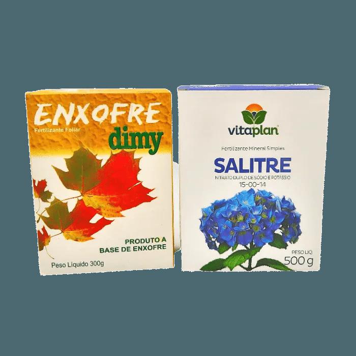 Enxofre + salitre