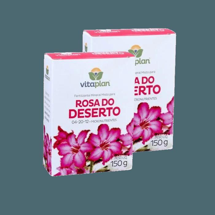 Rosa do deserto - kit 2 caixas 150 gr