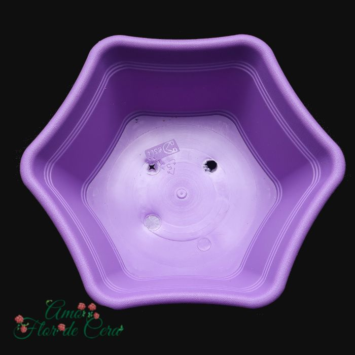 Vaso plastico hexagonal lilas