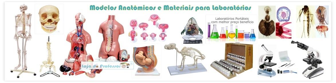 Modelos Anatômicos e Materiais para Laboratórios