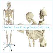 Esqueleto 168 cm Flexível c/ Suporte e Rodas