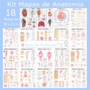 Kit Mapas de Anatomia (18 Mapas Dobrado 90 x 120 cm)