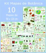 Kit Mapas de Botânica (10 Mapas Dobrado 90 x 120 cm)