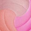 Trio Perfeito  04 - Blush UP Mosaico Dailus