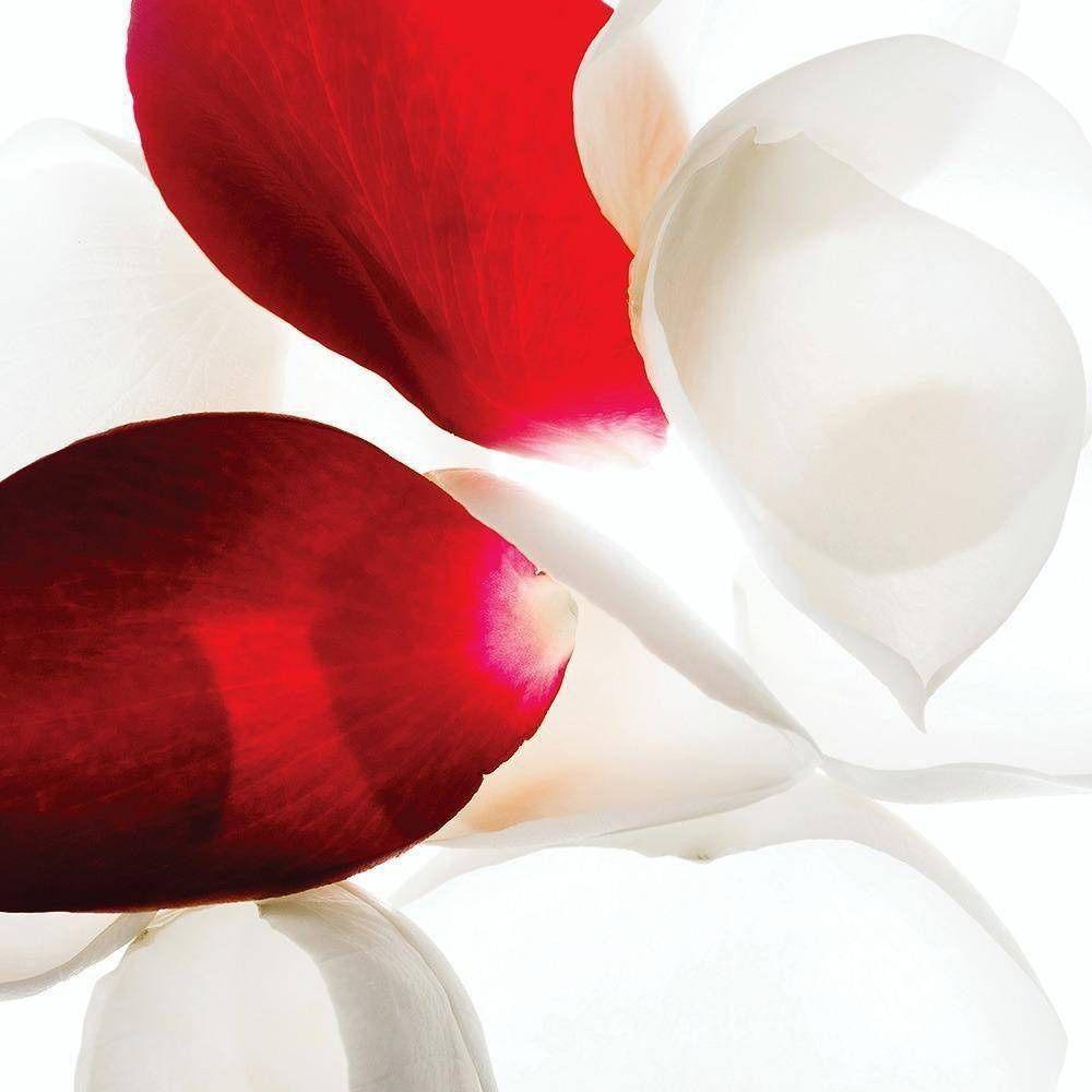 Máscara Facial Clareadora 16g - Linha Wild Rose - Korres