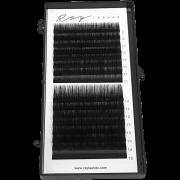 Cílios Ellipse Ray Lashes MIX 8 ao 15 - 16 linhas