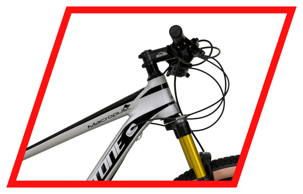 Bicicleta 29 MTB Macropus 2021 2X9V