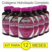 Colágeno Hidrolisado Com  Vitaminas E Minerais Kit Para 01 Ano.