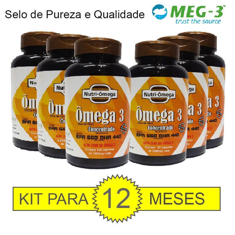 KIT PARA 01 ANO DE ÔMEGA 3 COM ALTO TEOR DE ÔMEGA 3 - EPA 660 DHA 440.