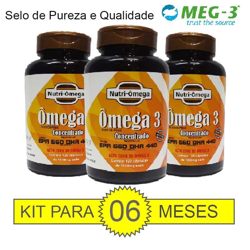 KIT PARA 06 MESES DE ÔMEGA 3 CONCENTRADO.