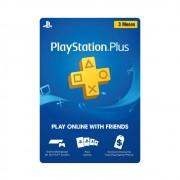 Cartão PlayStation PSN Plus 3 Meses