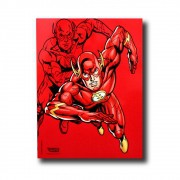 Quadro Metal Flash - DC - 26X20