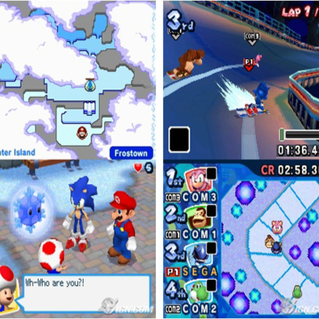 Mario & Sonic Olympic Winter Games - DSi