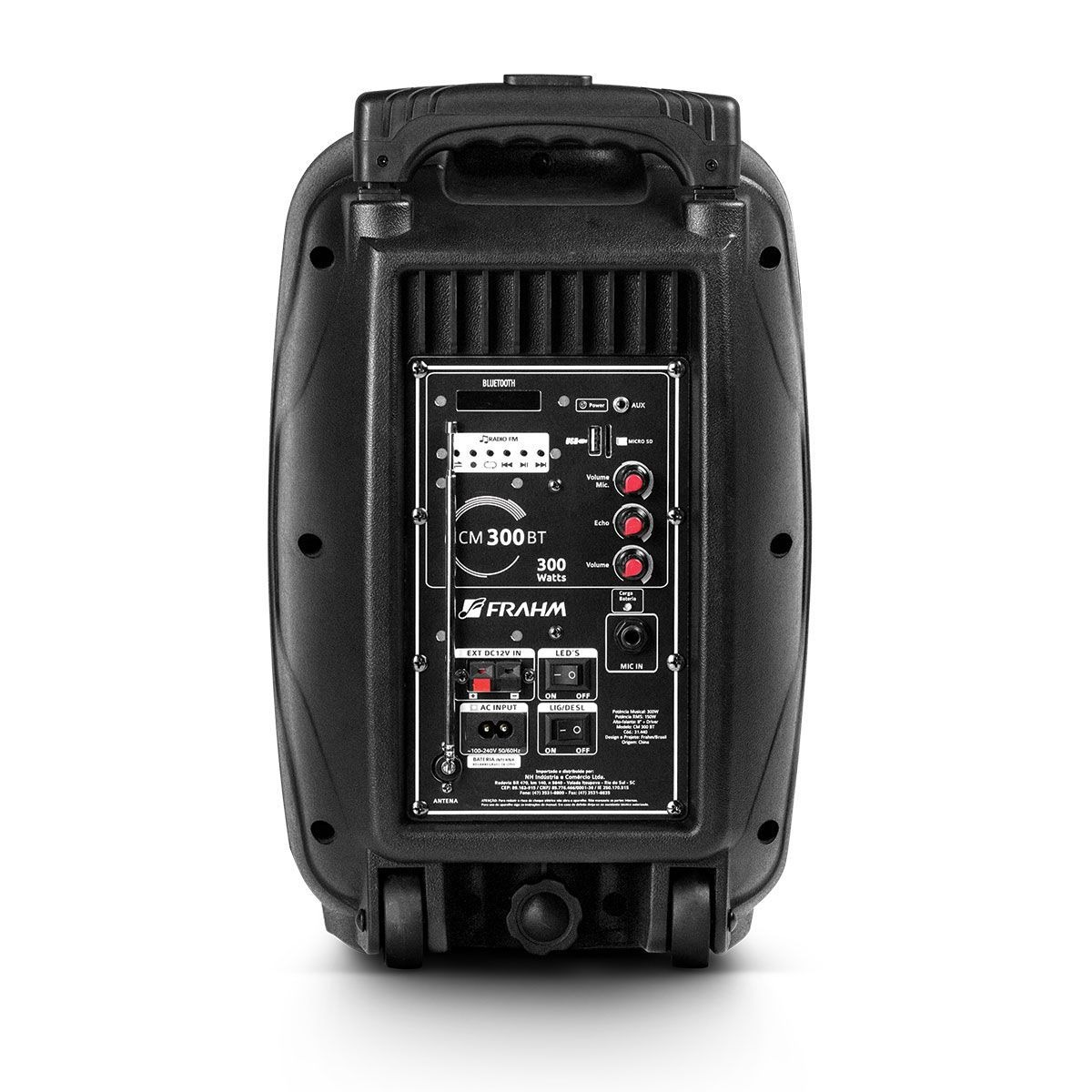 Caixa De Som Amplificada Portátil Frahm Cm300bt Bluetooth