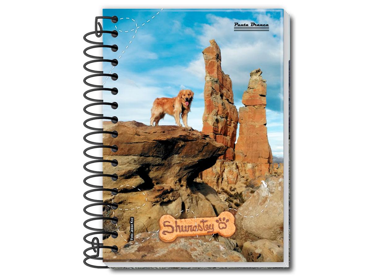 Caderneta Espiral 1/8 Capa Dura Shurastey 96 Fls. Pct. C/ 20 Unidades - Pauta Branca