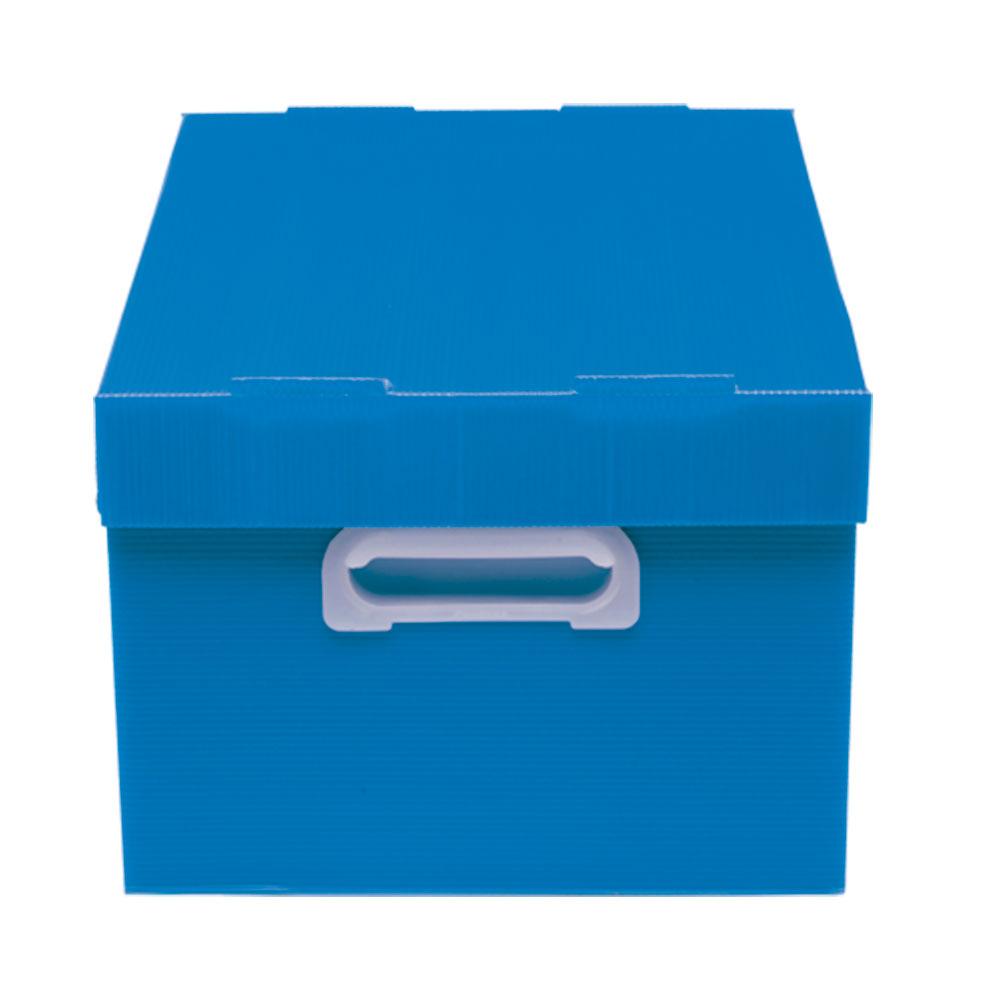 Caixa Organizadora M Polibras - Azul (fosca) - 222/09